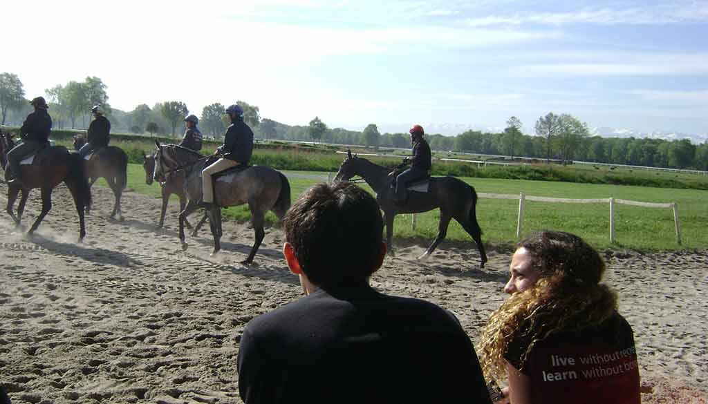 Pau-Horses