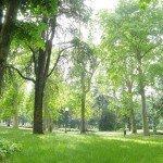 park near campus