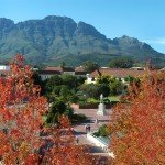 NEW Program: Stellenbosch, South Africa