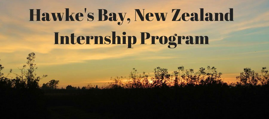 Hawke's-Bay,-New-Zealand-Internship