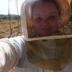 A Very Hands-On Internship as A Tropical Bee Research Assistant