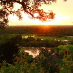 A Ghanaian Safari to Remember