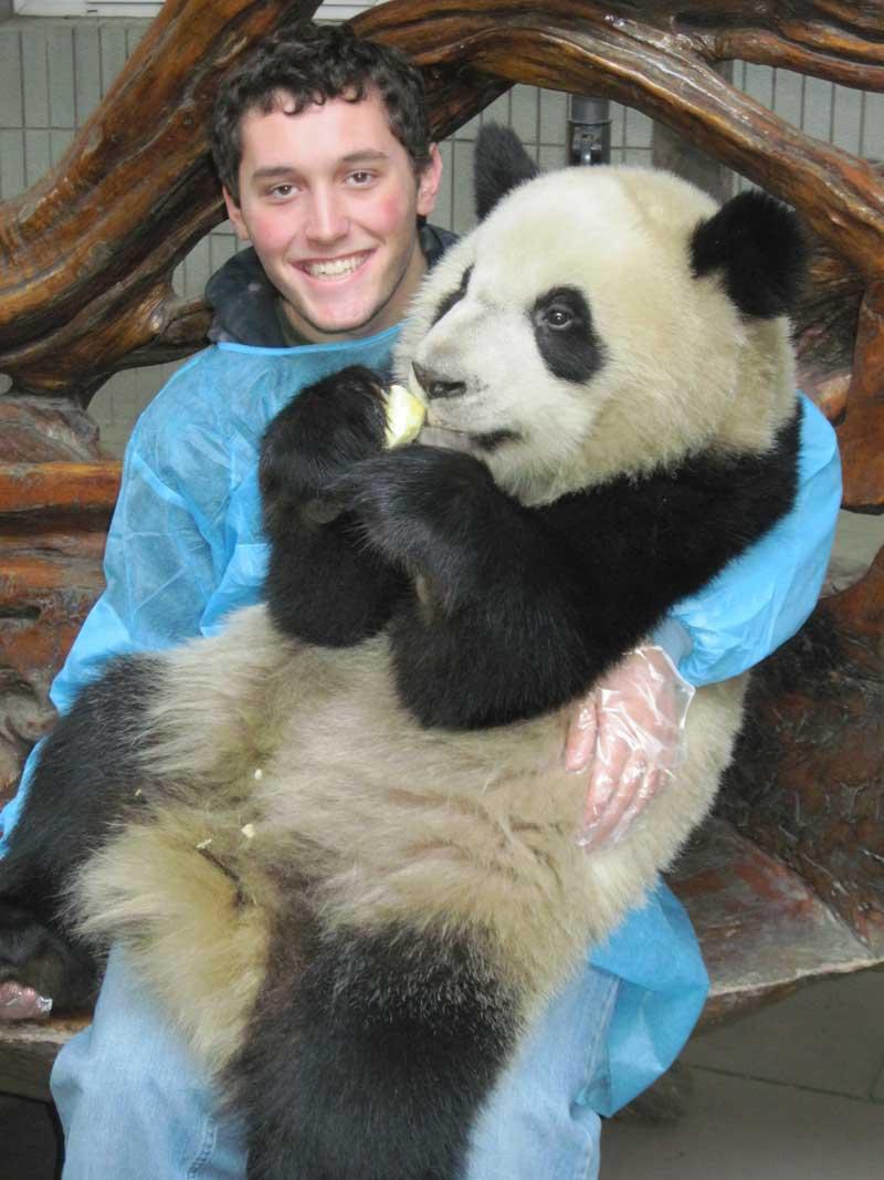 Holding pandas in Chengdu