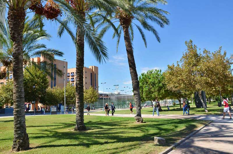 Study abroad Campus in Valencia Spain
