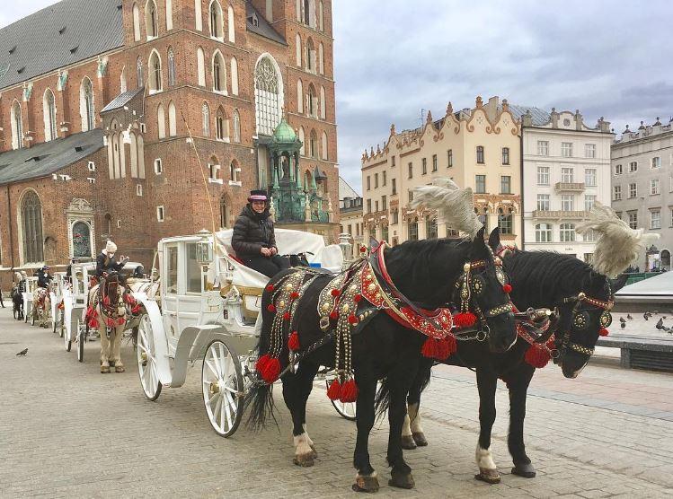 bailey_in_europe_krakow