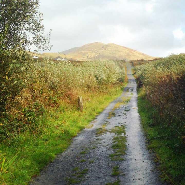 Ireland Roads