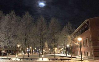 Getting Comfortable in Växjö, Sweden – Student Blogger