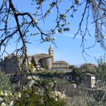 Program Highlight: Study Abroad in Viterbo, Italy