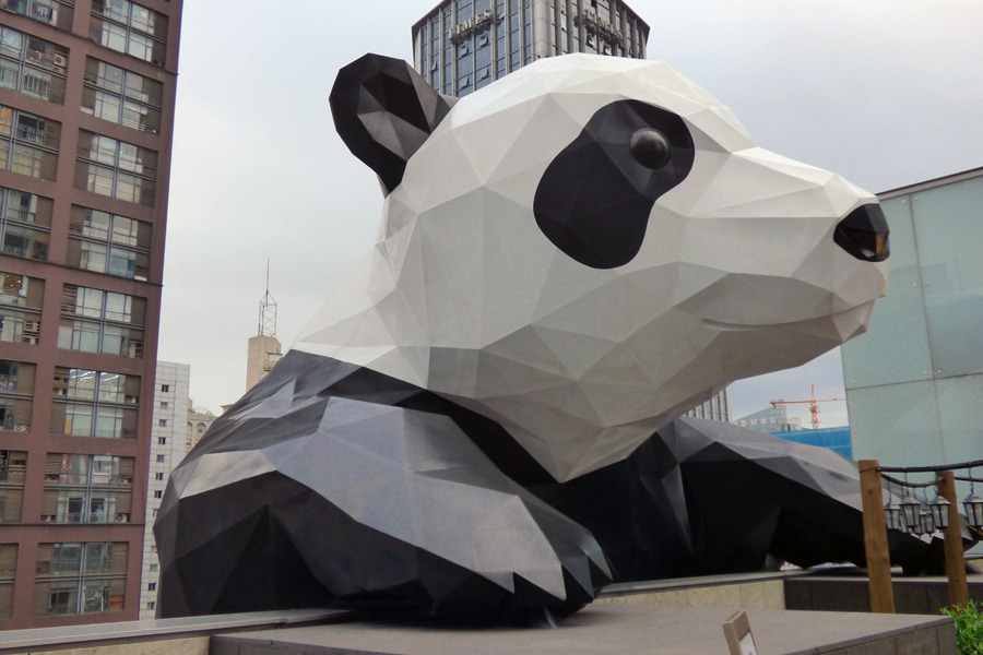 From Idaho to the land of the Giant Panda