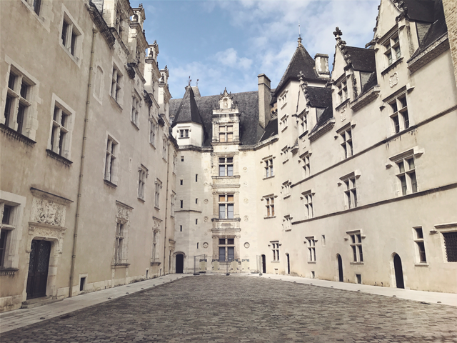 Château de Pau, Pau, France