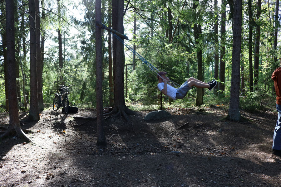 Swing built by students in the forest