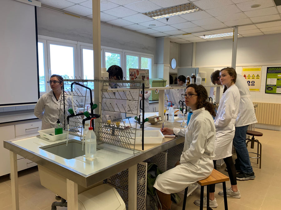 Students studying abroad in Valencia, Spain can take chemistry classes and learn in labs