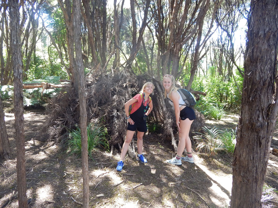 Students on a hike in Auckland, New Zealand