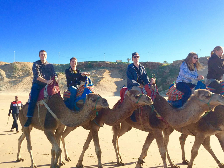 Students ride camels in Morocco during a study abroad in Alicante with USAC