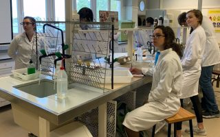 University Makes it Easy for STEM Students to Study Abroad