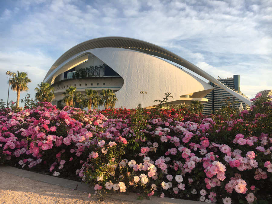 The City of Arts and Science in Valencia, Spain