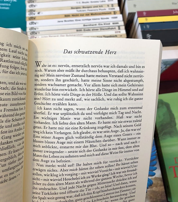 A picture of a German book