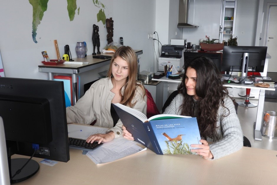 Two students study together during distance learning