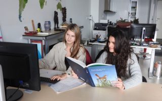 To Uruguay And Beyond: How A Virtual Internship Helped Prepare Me For My Career